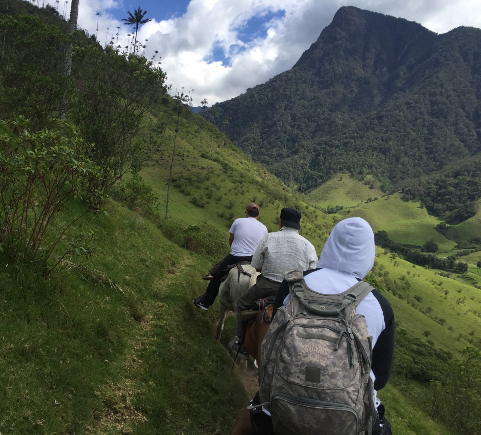 One hour horse ride between mountains for $15 USD— Valle del Cocora, Quindío — Colombia